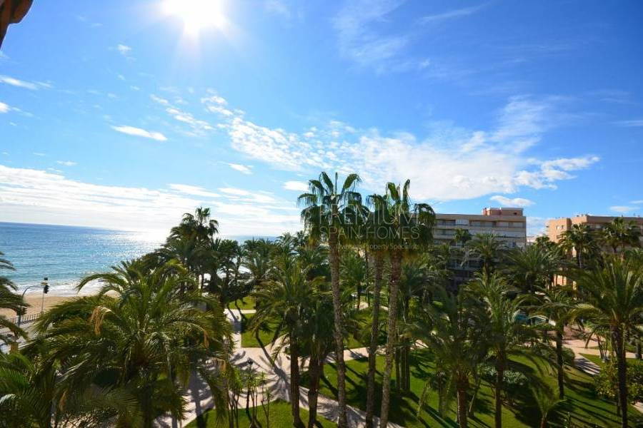 Resale - Apartment - Torrevieja - Playa De Los Locos