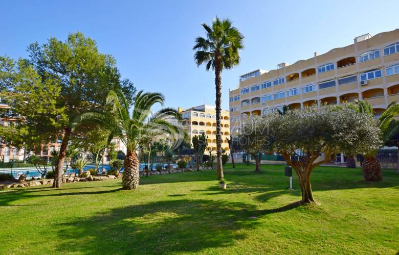 ON P100 - Apartment  Torrevieja